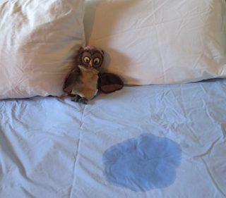 Çocuklarda Alt Islatma   Enürezis   Alt ıslatma tedavisi   Remzi Erdem   Kadir Tepeler   Ürolife